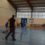 C. Sud B. - Douvres (49-76) 011