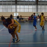 C. Sud B. - Douvres (49-76) 014