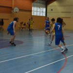 C. Sud B. - Douvres (49-76) 036