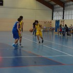 C. Sud B. - Douvres (49-76) 045