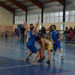 C. Sud B. - Douvres (49-76) 054