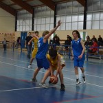 C. Sud B. - Douvres (49-76) 055